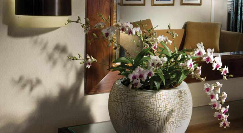 פרחים במלון המלך דוד